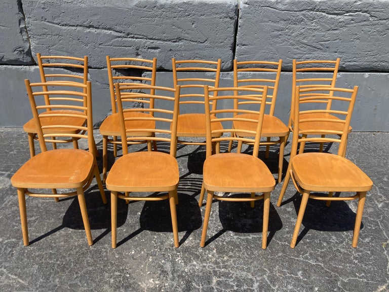Beautiful Bentwood Dining Chairs, in the Style of Thonet For Sale 3