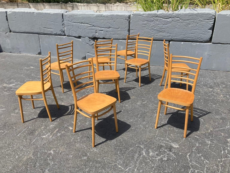 Beautiful Bentwood Dining Chairs, in the Style of Thonet For Sale 4
