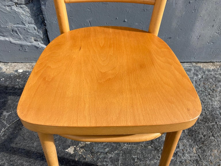 Beautiful Bentwood Dining Chairs, in the Style of Thonet For Sale 6