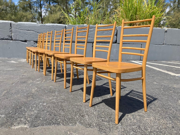 Mid-Century Modern Beautiful Bentwood Dining Chairs, in the Style of Thonet For Sale