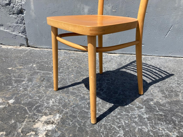 Wood Beautiful Bentwood Dining Chairs, in the Style of Thonet For Sale