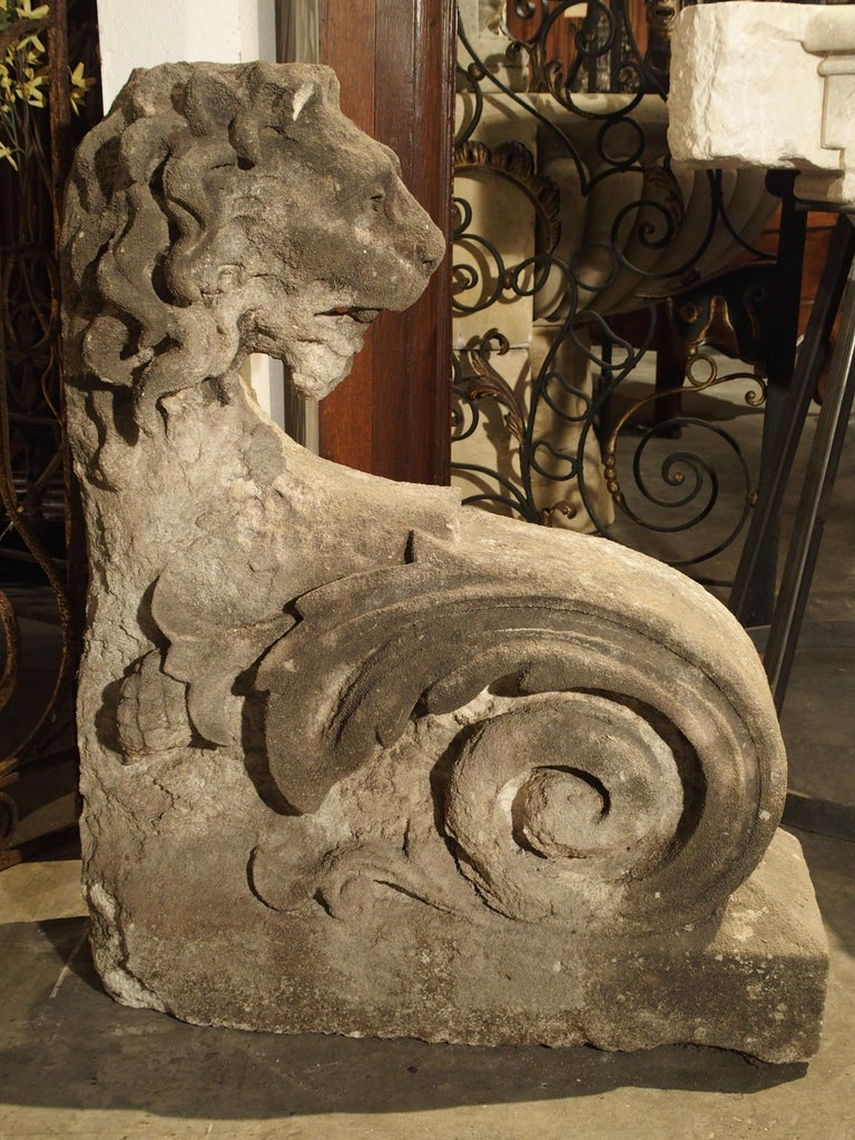 Beautiful Carved Limestone Lion Architectural, Burgundy France, 17th Century For Sale 4