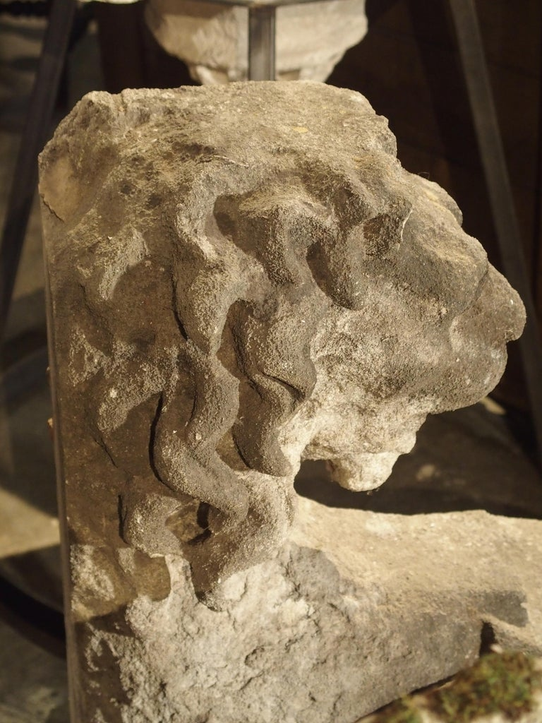 This magnificent hand-carved lion head architectural dates to the 1600s and was salvaged from a chateau near Macon, France. With the head of a lion and the body of an acanthus leaf volute, this was once mounted to a building facade or wall. This