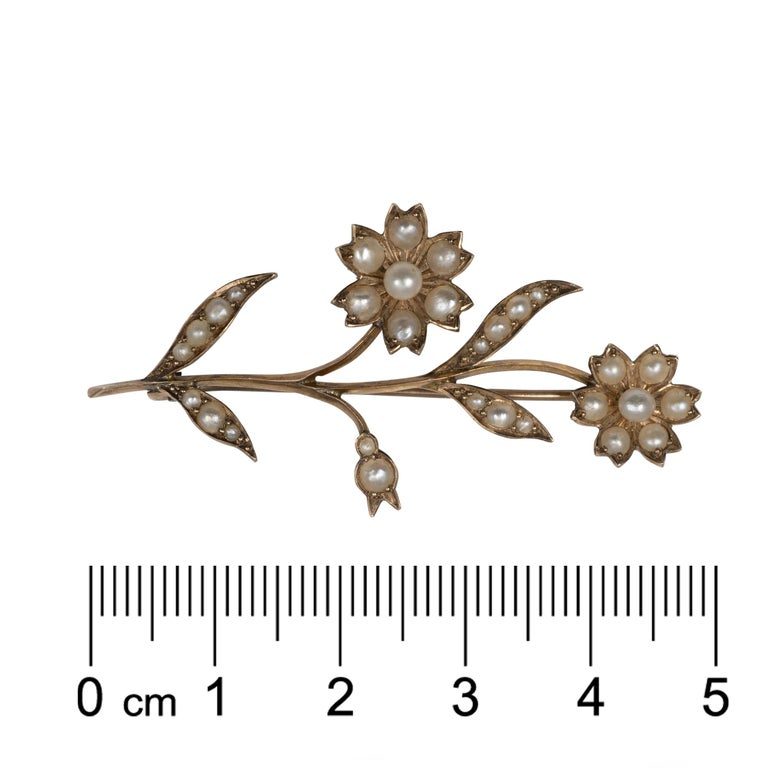 Beautiful Early 20th Century Gold Pearl Flower Stem Brooch Pin, circa 1900 For Sale 3