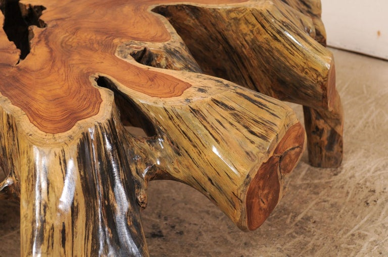 Beautiful European Tree Root Coffee Table For Sale 3