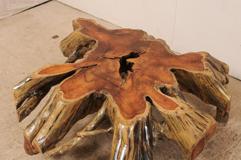 19th Century Beautiful European Tree Root Coffee Table For Sale