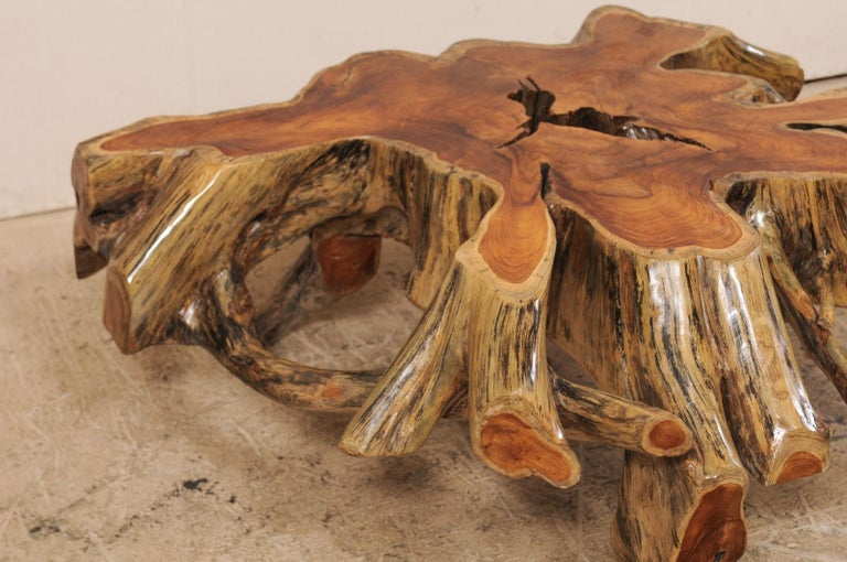 Wood Beautiful European Tree Root Coffee Table For Sale