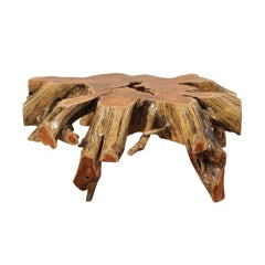Beautiful European Tree Root Coffee Table