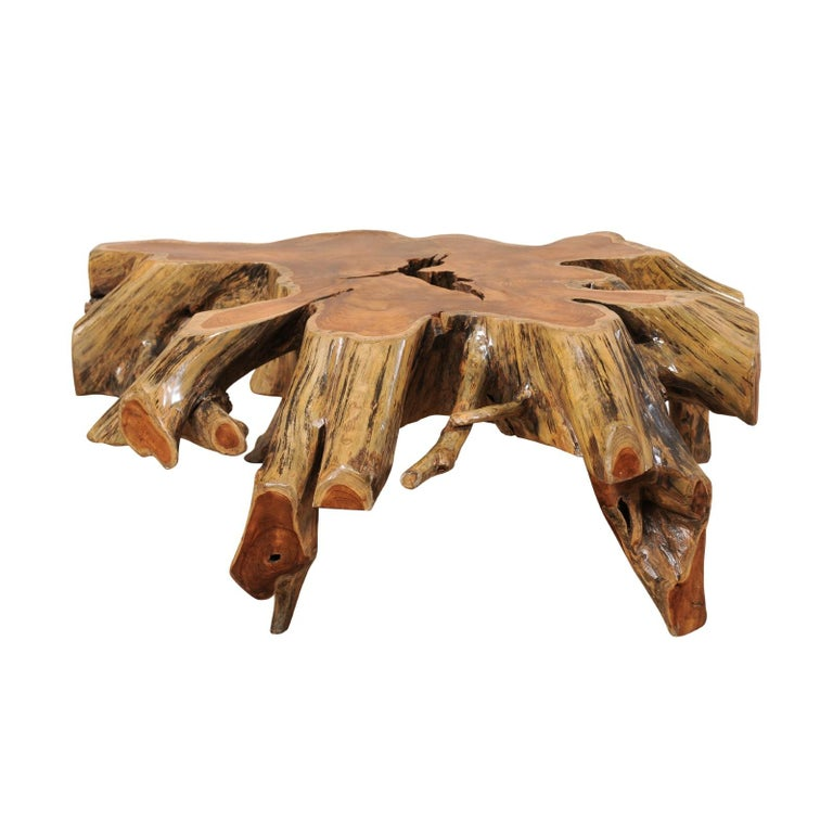 Root Coffee Table For Sale: Beautiful European Tree Root Coffee Table For Sale At 1stdibs