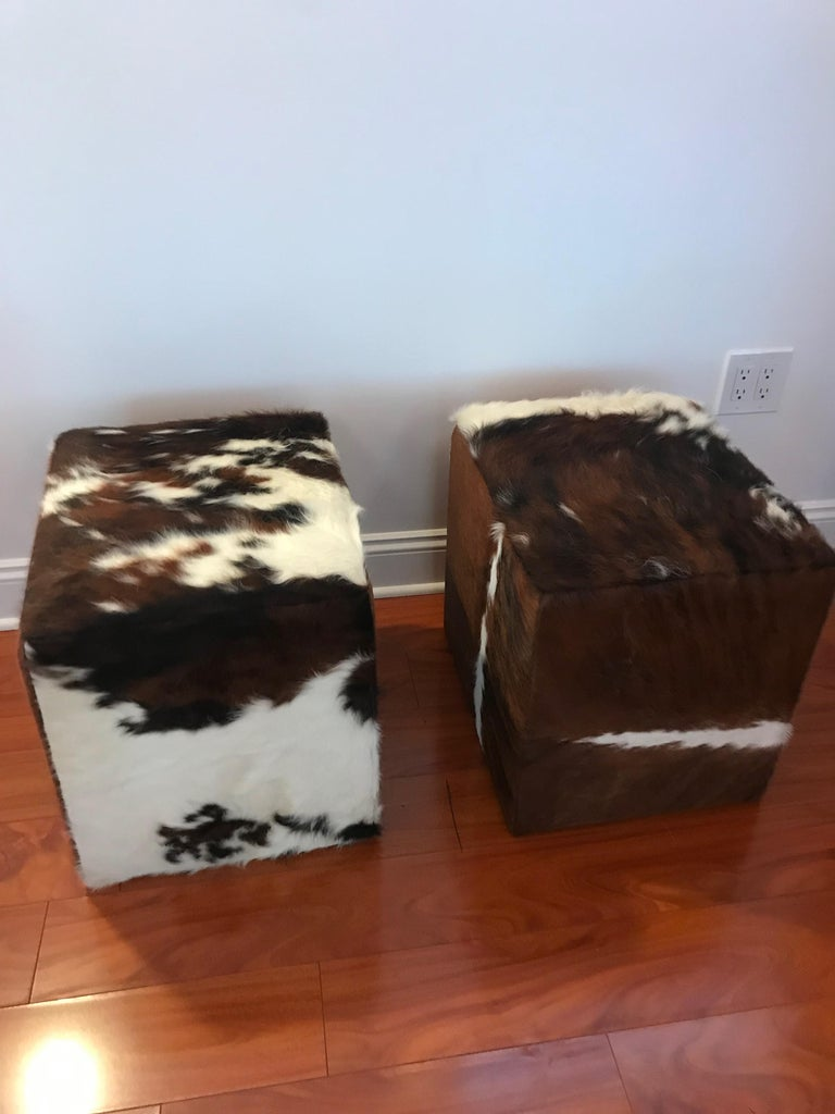 Cowhide Beautiful Pair of Cow Hide Benches or Ottomans For Sale