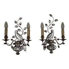 Beautiful Pair of Parrots Wall Sconces by Maison Baguès, Paris, circa 1930s