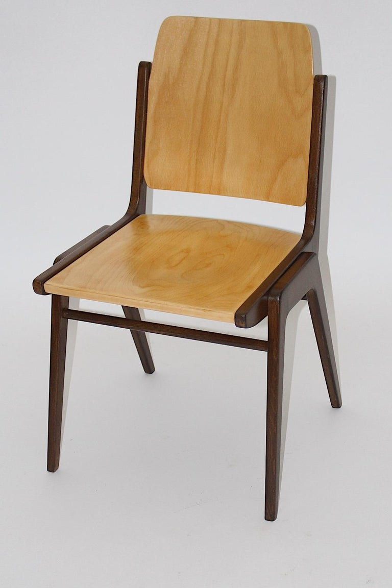 Beechwood Bicolor Brown Mid-Century Modern Vintage Dining Chairs, Franz Schuster For Sale 11