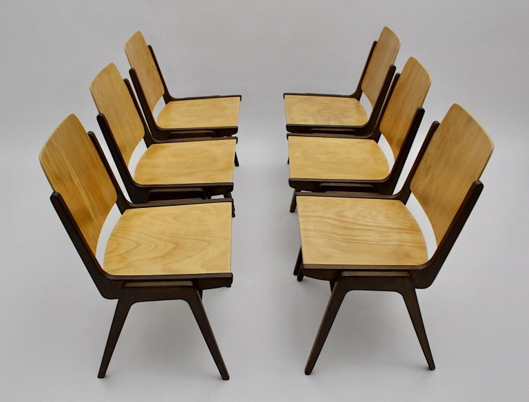 Beechwood Bicolor Brown Mid-Century Modern Vintage Dining Chairs, Franz Schuster For Sale 12