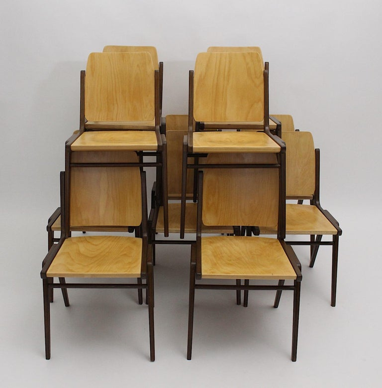 Beechwood Bicolor Brown Mid-Century Modern Vintage Dining Chairs, Franz Schuster In Good Condition For Sale In Vienna, AT