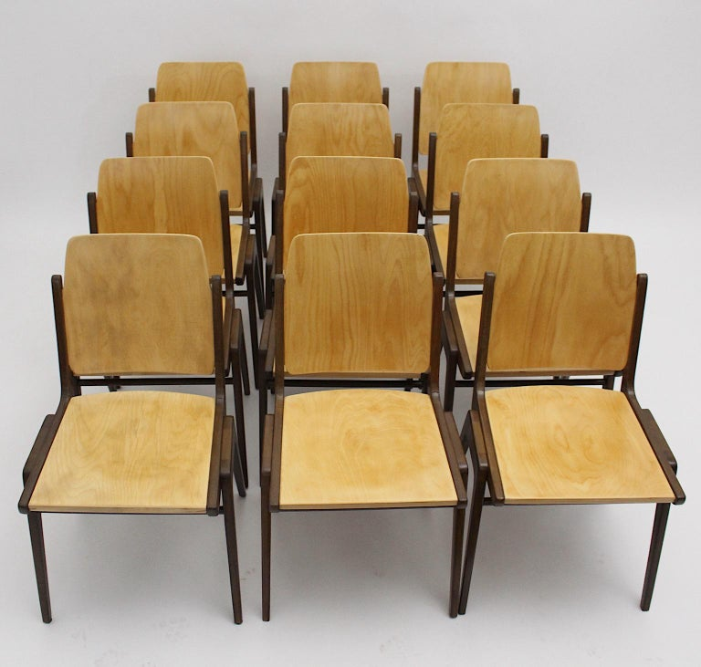20th Century Beechwood Bicolor Brown Mid-Century Modern Vintage Dining Chairs, Franz Schuster For Sale