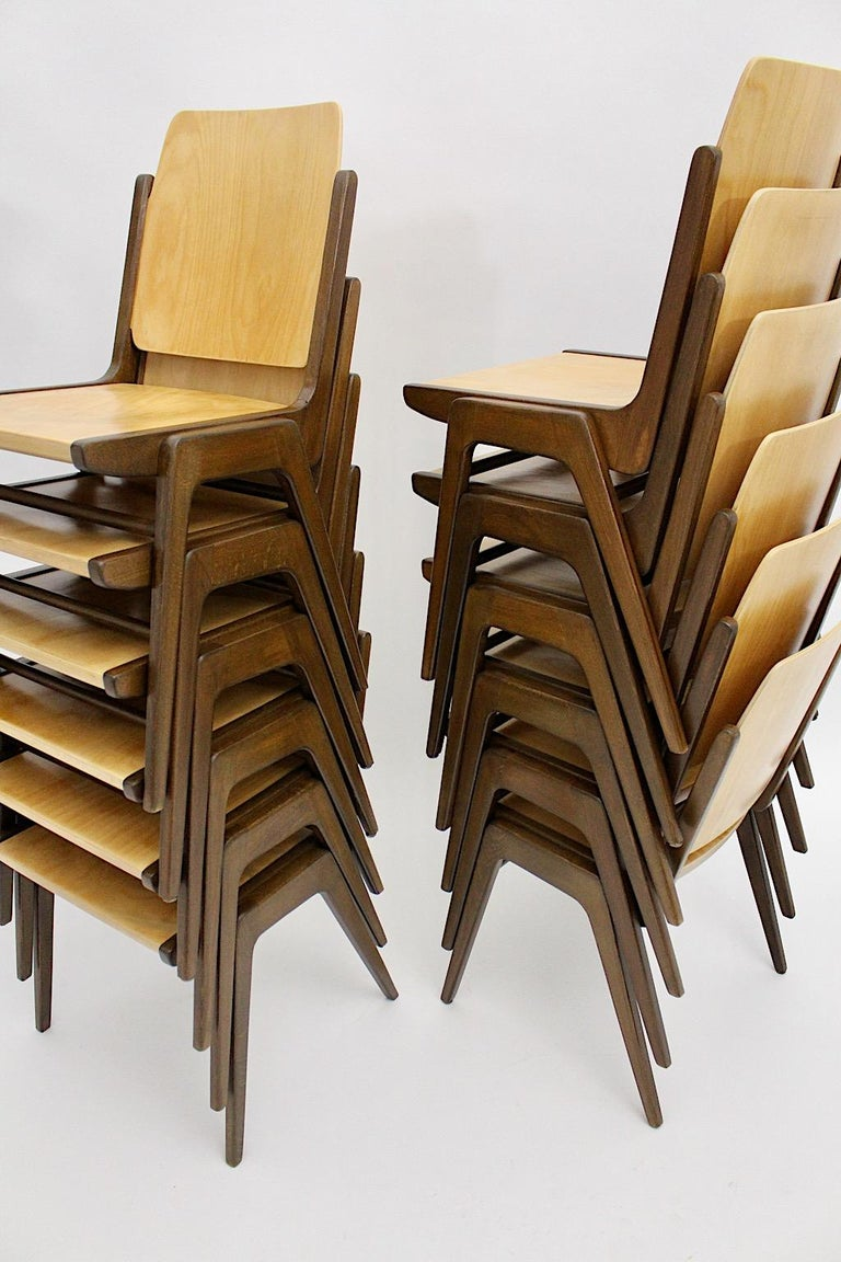Beechwood Bicolor Brown Mid-Century Modern Vintage Dining Chairs, Franz Schuster For Sale 1
