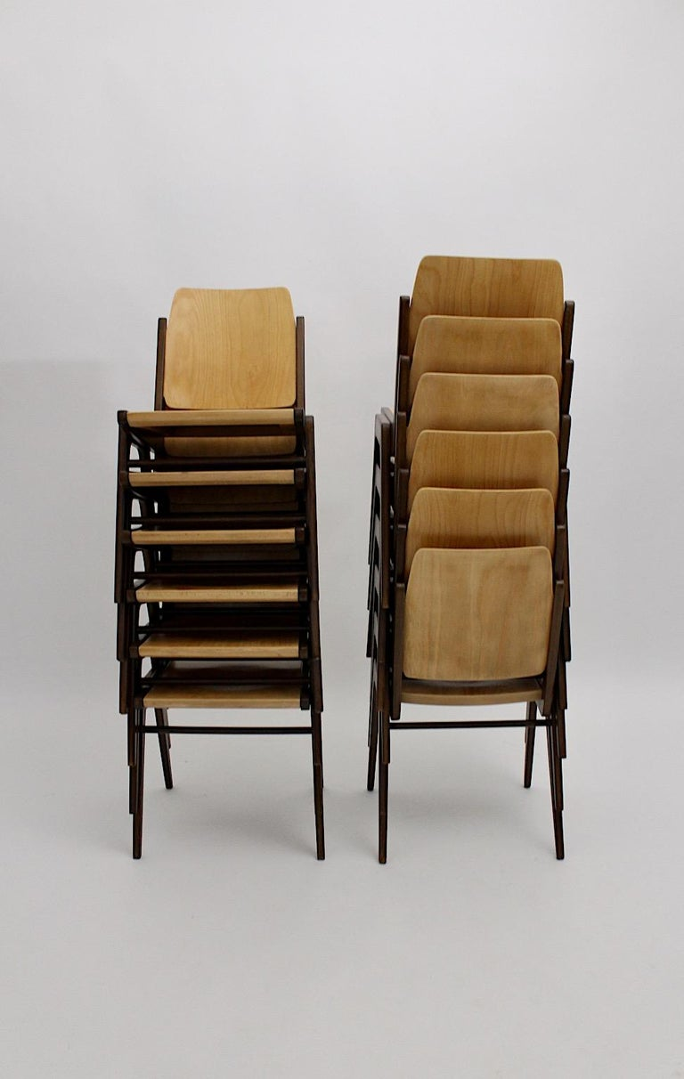 Beechwood Bicolor Brown Mid-Century Modern Vintage Dining Chairs, Franz Schuster For Sale 2