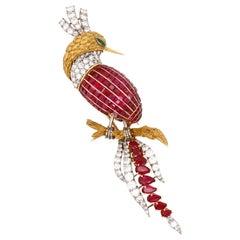 Bejeweled Bird of Paradise, France, circa 1960s