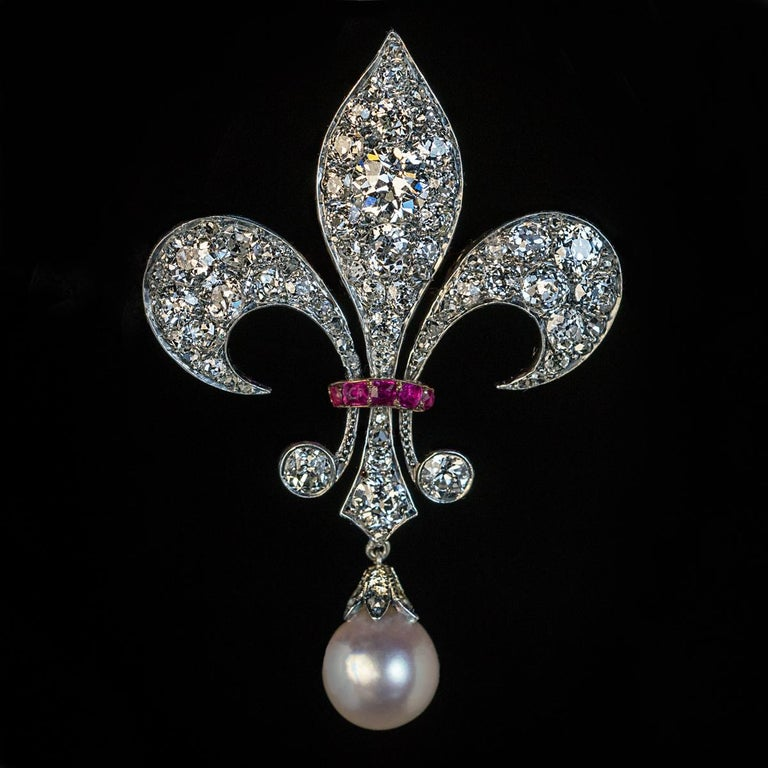 Belle Époque Belle Epoque Antique Diamond Pearl Ruby Fleur-de-Lis Brooch For Sale