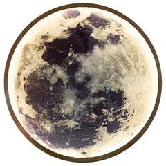 Ben and Aja Blanc Moon Light