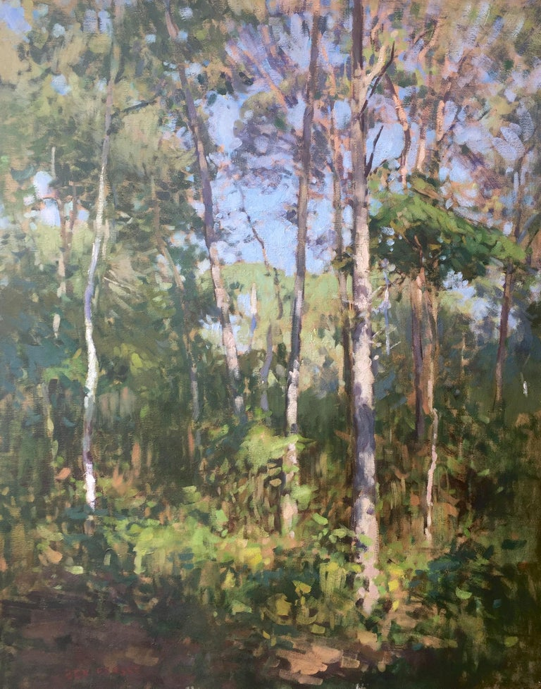 Ben Fenske Landscape Painting - Through the Trees