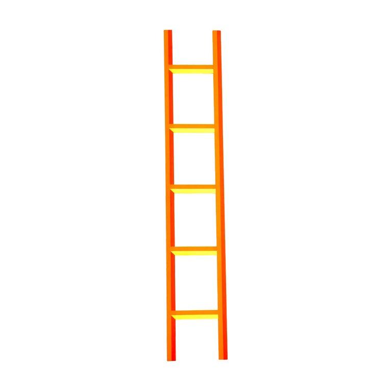 Ben Jones Ladder For Sale