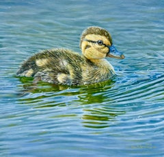 'Ripples' contemporary photorealist painting of a duckling on water, blue