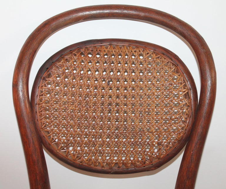 Bentwood Rocker and Chair with Cane Seats, 19th Century For Sale 5