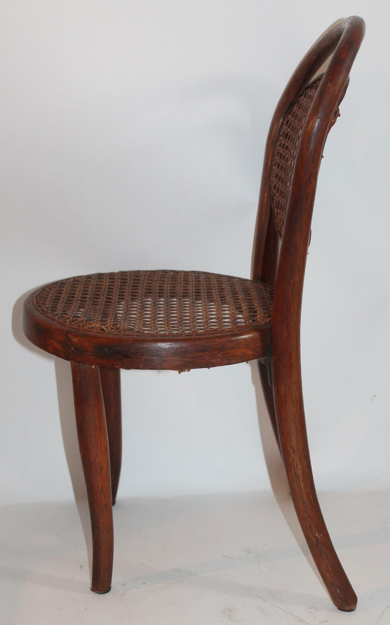 Bentwood Rocker and Chair with Cane Seats, 19th Century For Sale 7