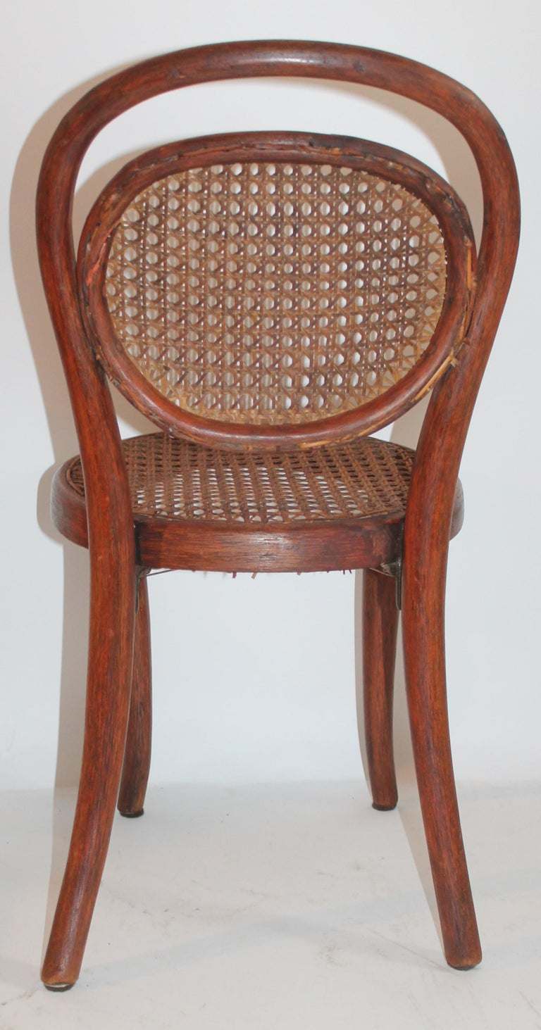Bentwood Rocker and Chair with Cane Seats, 19th Century For Sale 9