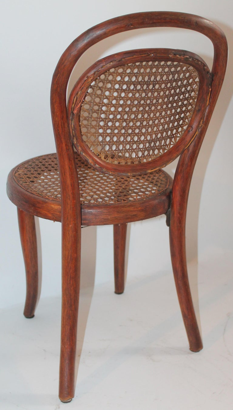 Bentwood Rocker and Chair with Cane Seats, 19th Century For Sale 10