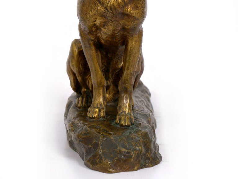 """""""Berger Allemand Assis"""" 'German Shepherd' French Bronze Sculpture by Louis Riché For Sale 12"""