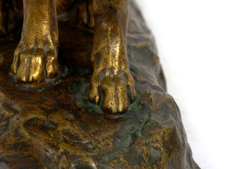 """""""Berger Allemand Assis"""" 'German Shepherd' French Bronze Sculpture by Louis Riché For Sale 14"""