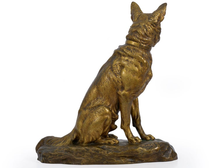A fine gilt and patinated bronze sculpture that captures the figure of an Alsatian, often noted in literature as a German Shepherd. He is situated with an alert and friendly profile while seated over a rocky naturalistic base. The complex patina is