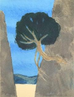 Laurel In A Ravine - Original lithograph handsigned - 100 copies