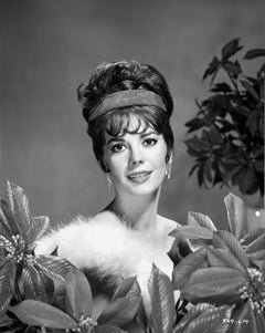 "Natalie Wood in ""Gypsy"" Fine Art Print"
