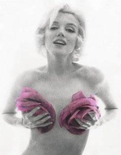 Marilyn Monroe, Pink Roses