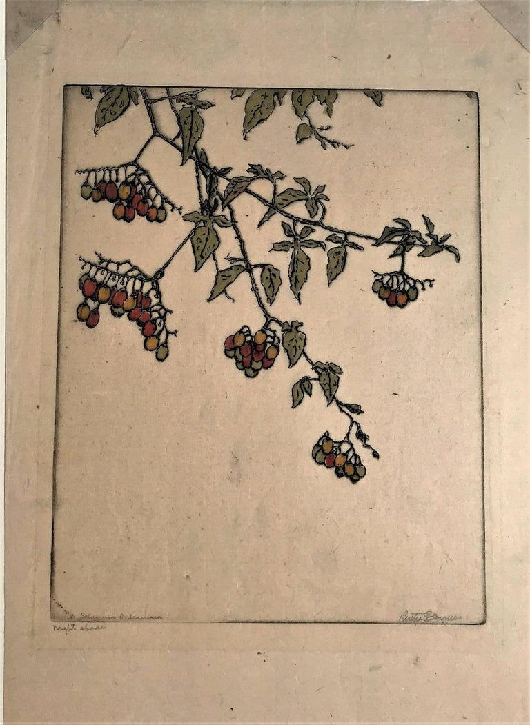 Fulcassiara (Night Shade #2. Solanum Dulcamara). ( Deadly Nightshade). 1932. Drypoint with hand coloring. Jaques 432. 10 7/8 x 7 7/8 (sheet 15 1/8 x 10 1/16). A rich impression with plate tone, printed on Japanese mulberry paper. Provenance: the