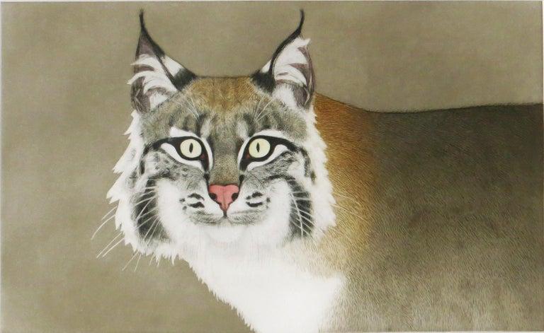 Beth van Hoesen Animal Print - Bobcat (Rufus)