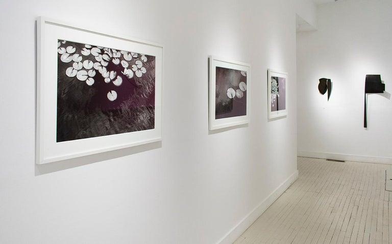 Summer Lilies (Realist Black & White Landscape Photograph of Botanicals) For Sale 4