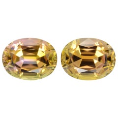 Bicolor Tourmaline Earrings Gemstone Pair 13.99 Carat Loose Gems