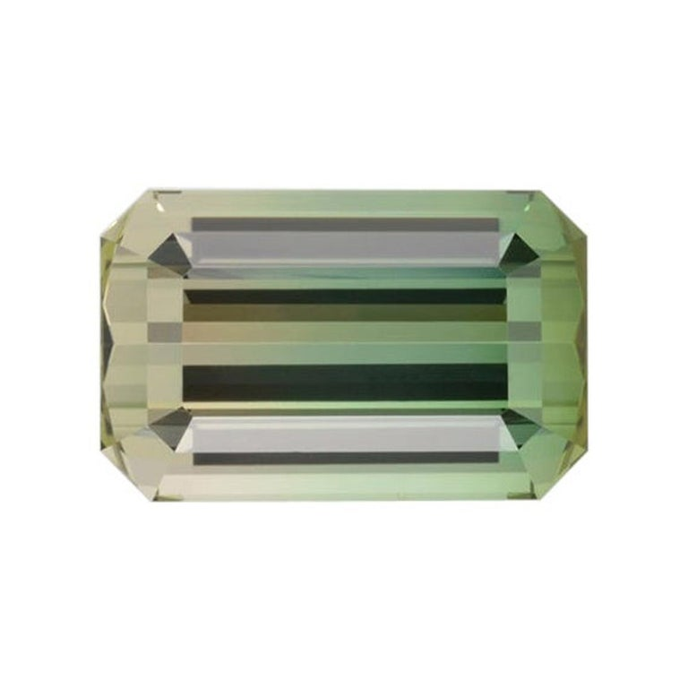 Bicolor Tourmaline Ring Gem 17.68 Carat Emerald Cut Loose Gemstone For Sale