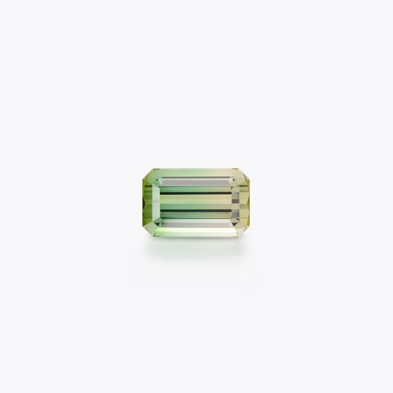 Modern Bicolor Tourmaline Ring Gem 17.68 Carat Emerald Cut Loose Gemstone For Sale