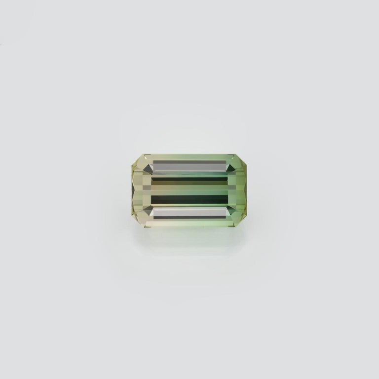 Bicolor Tourmaline Ring Gem 17.68 Carat Emerald Cut Loose Gemstone In New Condition For Sale In Beverly Hills, CA