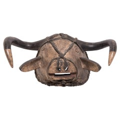 Bidjogo Tribal Initiation Ox Mask