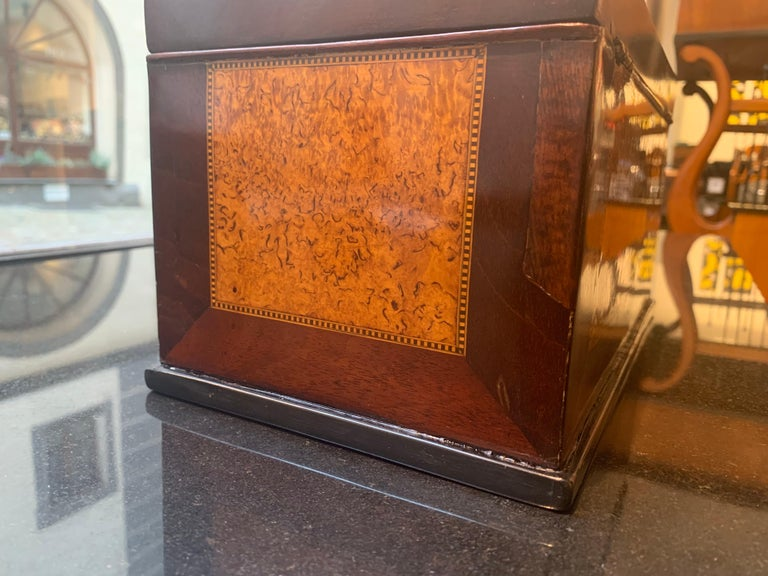 Biedermeier Casket Box, Thuja Roots and Mahogany, Germany, 19th Century For Sale 7