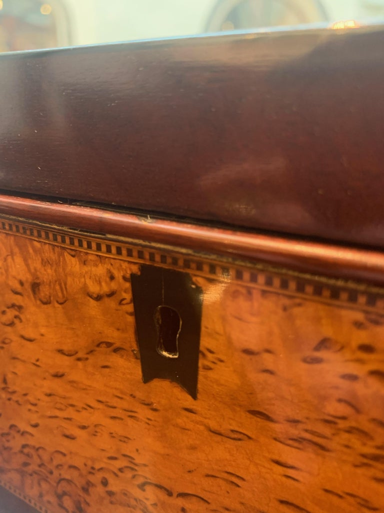 Biedermeier Casket Box, Thuja Roots and Mahogany, Germany, 19th Century In Good Condition For Sale In Regensburg, DE