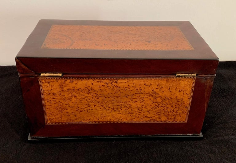 Biedermeier Casket Box, Thuja Roots and Mahogany, Germany, 19th Century For Sale 1