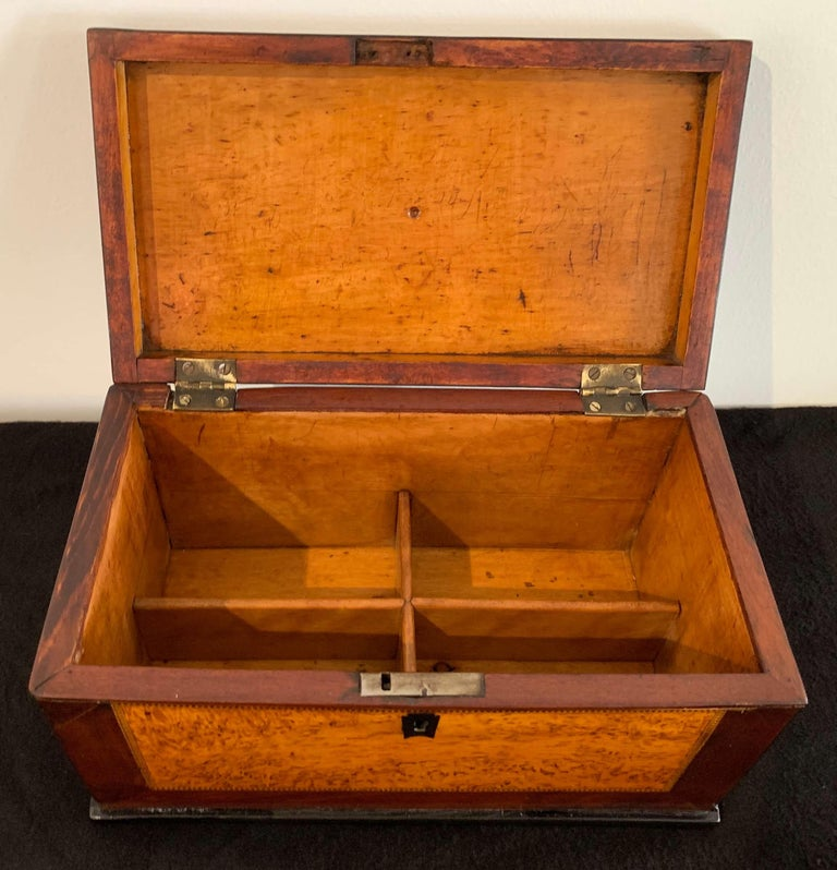 Biedermeier Casket Box, Thuja Roots and Mahogany, Germany, 19th Century For Sale 2