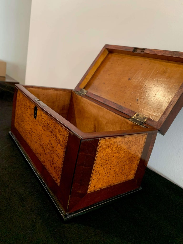 Biedermeier Casket Box, Thuja Roots and Mahogany, Germany, 19th Century For Sale 3